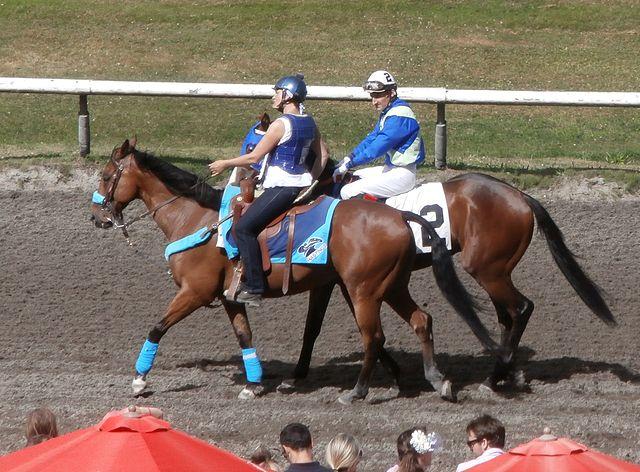 Führpferd mit Rennpferd als Handpferd