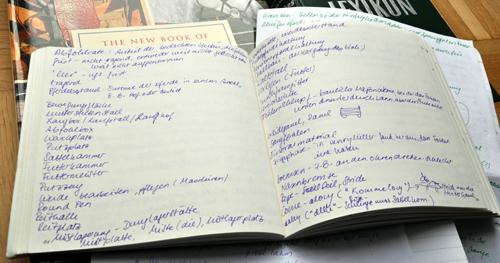 Notizbuch Pferdewörter