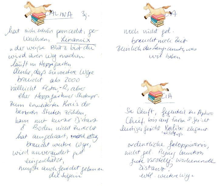 Meine Notizen zu einer Stall-Parade 1998